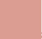 tigeress-lashes-logo.png