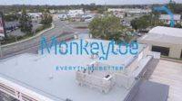 MonkeyToe.jpg
