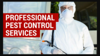 Pest Control Gowrie