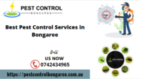 Pest Control Bongaree Images.png