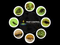 Pest-Control-Quakers-Hill.png
