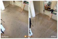 Carpet Cleaning Narre Warren.JPG