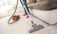 carpet cleaning images.png