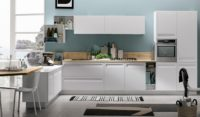 Modern Kitchen Designs Sydney.jpg
