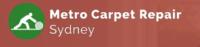 Carpet Repair Sy.png