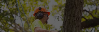 Tree Removal Melbourne - Copy.png